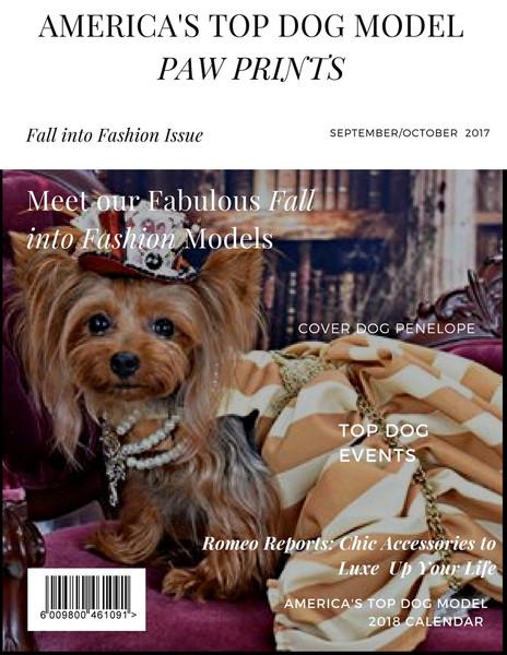 Fall into Fashion