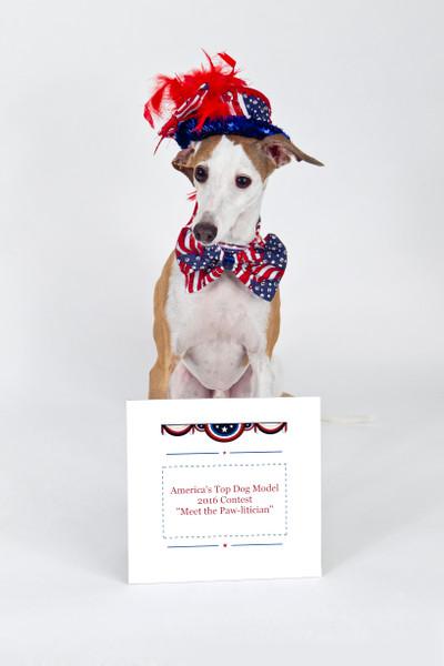 America's Top Dog Model (R) 2016 Contest