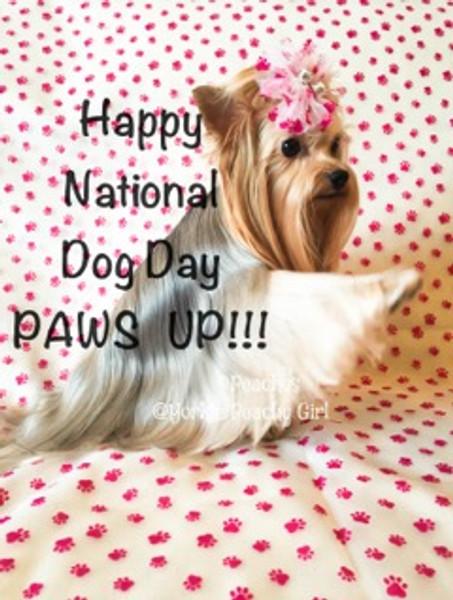 Celebrate National Dog Day