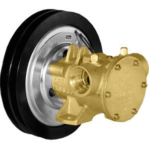 """Jabsco 1"""" Electro-Magnetic Clutch Pump - 12V [11860-0005]"""