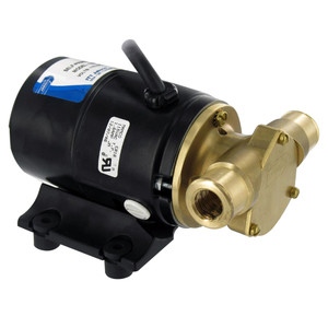 Jabsco Handi Puppy Utility Bronze AC Motor Pump Unit [12210-0001]