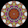 interior image of the K-Pod Paperweight Series Kaleidoscope by Charles Karadimos