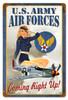 Air Force Pin Up