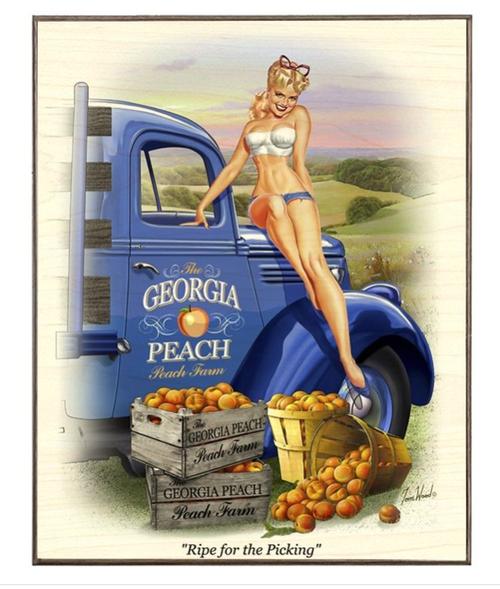 """'""""GEORGIA  PEACH""""  12x15  Birch  Wood  Print"""