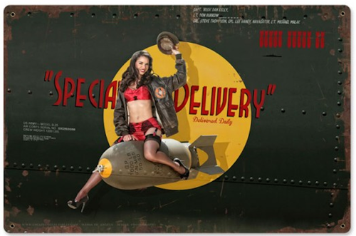 """""""SPECIAL  DELIVERY""""  METAL  SIGN"""