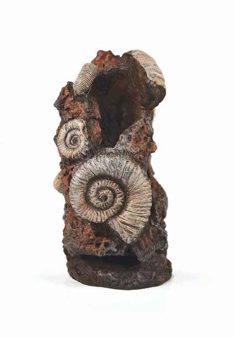biOrb Ancient Conch Ornament