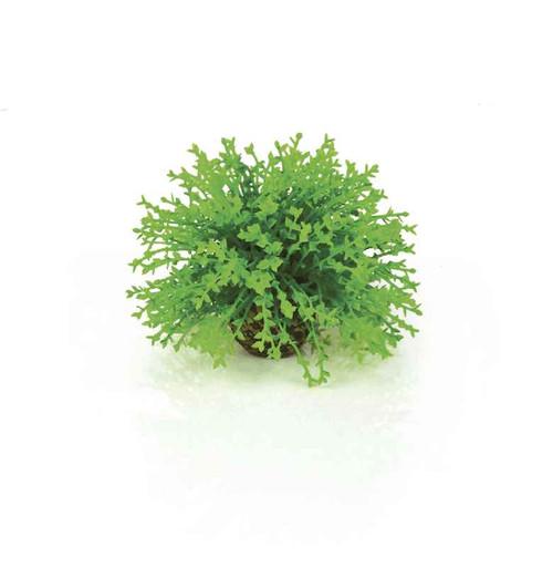biOrb Flower Ball Green