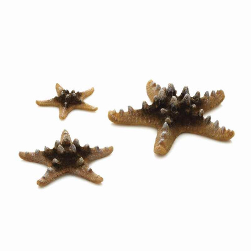 biOrb Sea Star Set 3 Natural