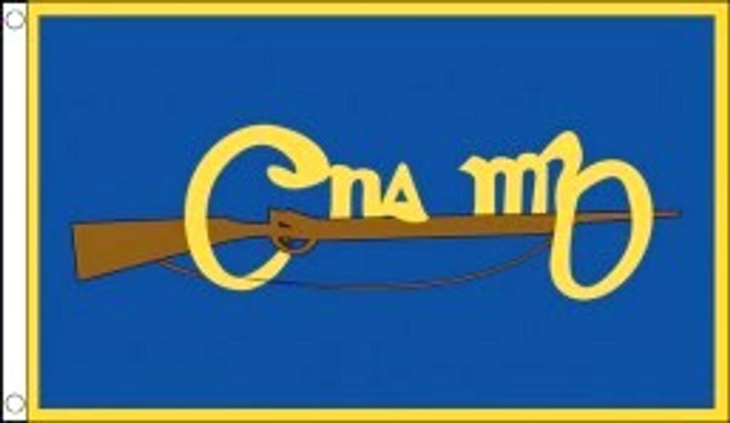 Cumann na mBan Flag