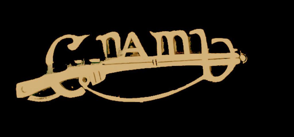 Gold colour Cumann Na mBan Badge