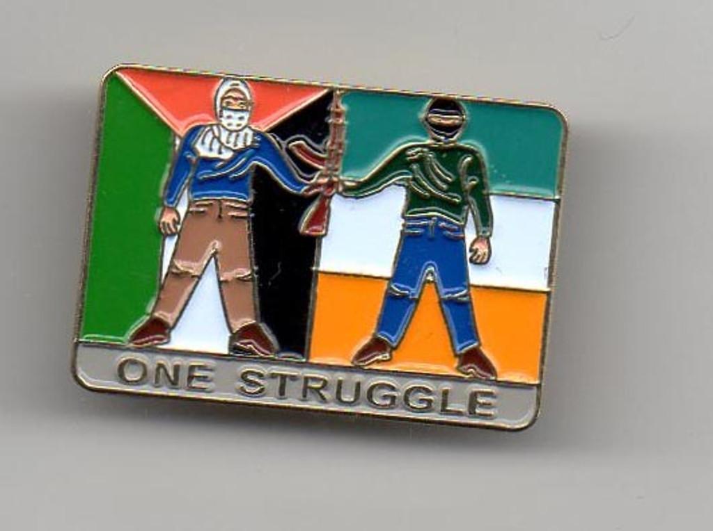 One Struggle Palestine-Ireland Pin