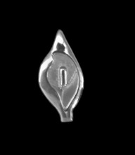 Solid Silver Easter Lily Pin