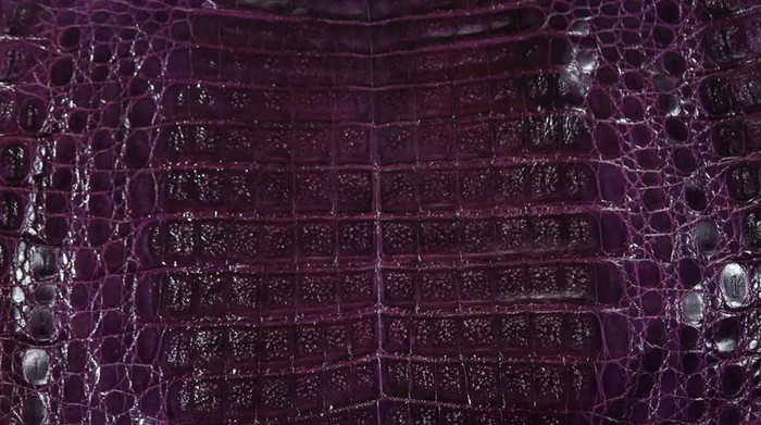 Caiman Belly Skin - Glazed - Purple (38cm)