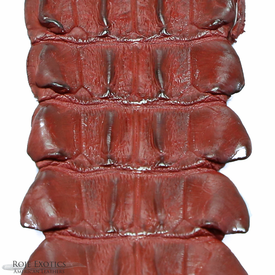 Nile Crocodile Backstrap - Red