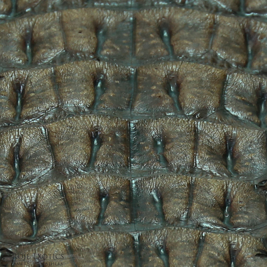 Nile Crocodile Backstrap  - Forrest Green