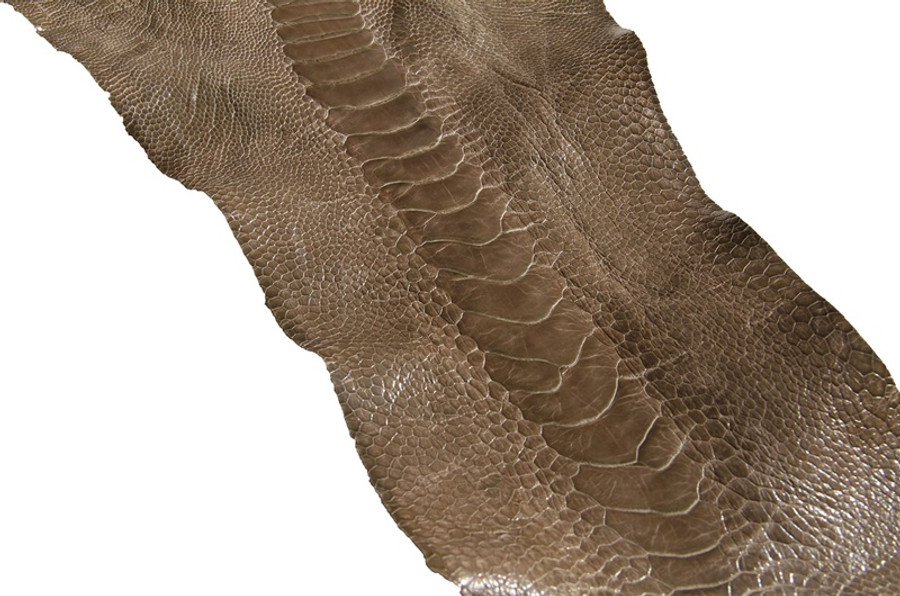 Genuine Ostrich Leg - Glazed Finish in Dark Taupe
