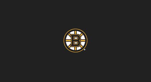 Boston Bruins Pool Table Felt 9 foot table