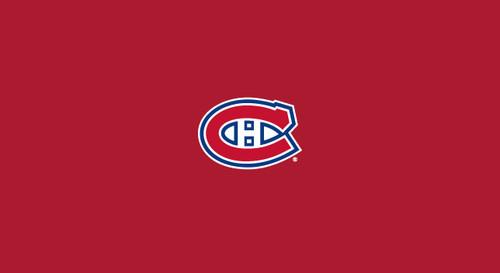 Montreal Canadiens Pool Table Felt 9 foot table