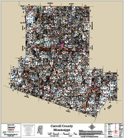 Carroll County Mississippi 2018 Wall Map