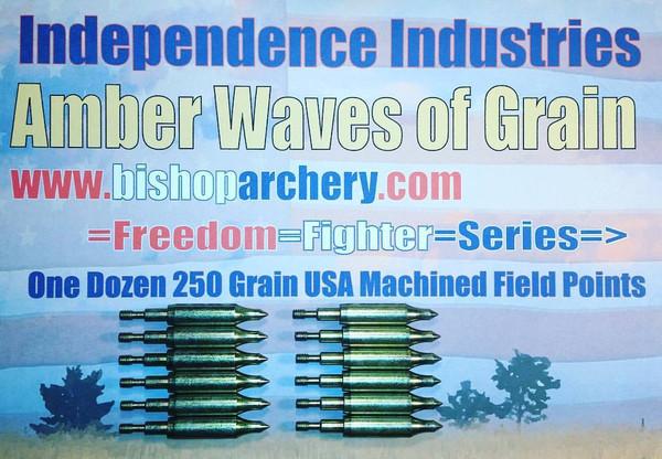 ONE DOZEN 250 GRAIN MACHINED FIELD POINTS