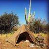Coyote Tarp - 10'x10'
