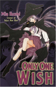 Only One Wish Graphic Novel