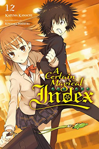 A Certain Magical Index Novel 12