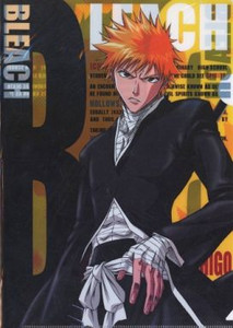 Bleach Folder - Ichigo