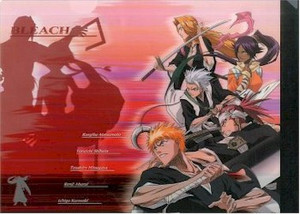 Bleach Folder - Group