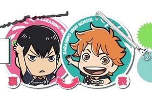 Haikyu!! ID Passcase - Shoyo & Tobio