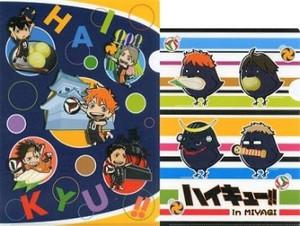Haikyu!! File Folder - Miyagi Limited (2-pc Set)