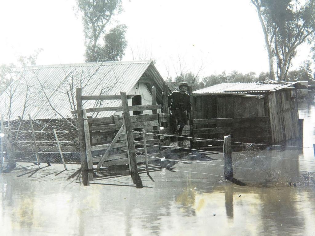"RARE c1920 GOONDIWINDI FLOODS REAL PHOTO POSTCARD. ""MICKS HOUSE IN THE FLOOD"""
