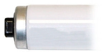 """T12 96"""" Cool White High Output Fluorescent Lamp"""