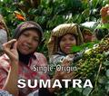 Sumatra Single-Origin Fair-Trade Ketiara Cooperative - Medium Roast Coffee - Kosher For Passover