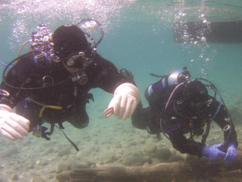 Learn to scuba dive in Edmonton, Alberta, Canada