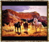 Horse Canyon Tapestry Throw MS-4637TU3