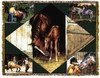 Horse Lovers Tapestry Throw MS-9230TU4