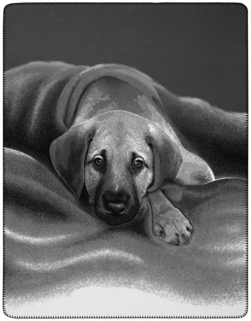 Barry Dog Portrait Blanket by Biederlack of Germany