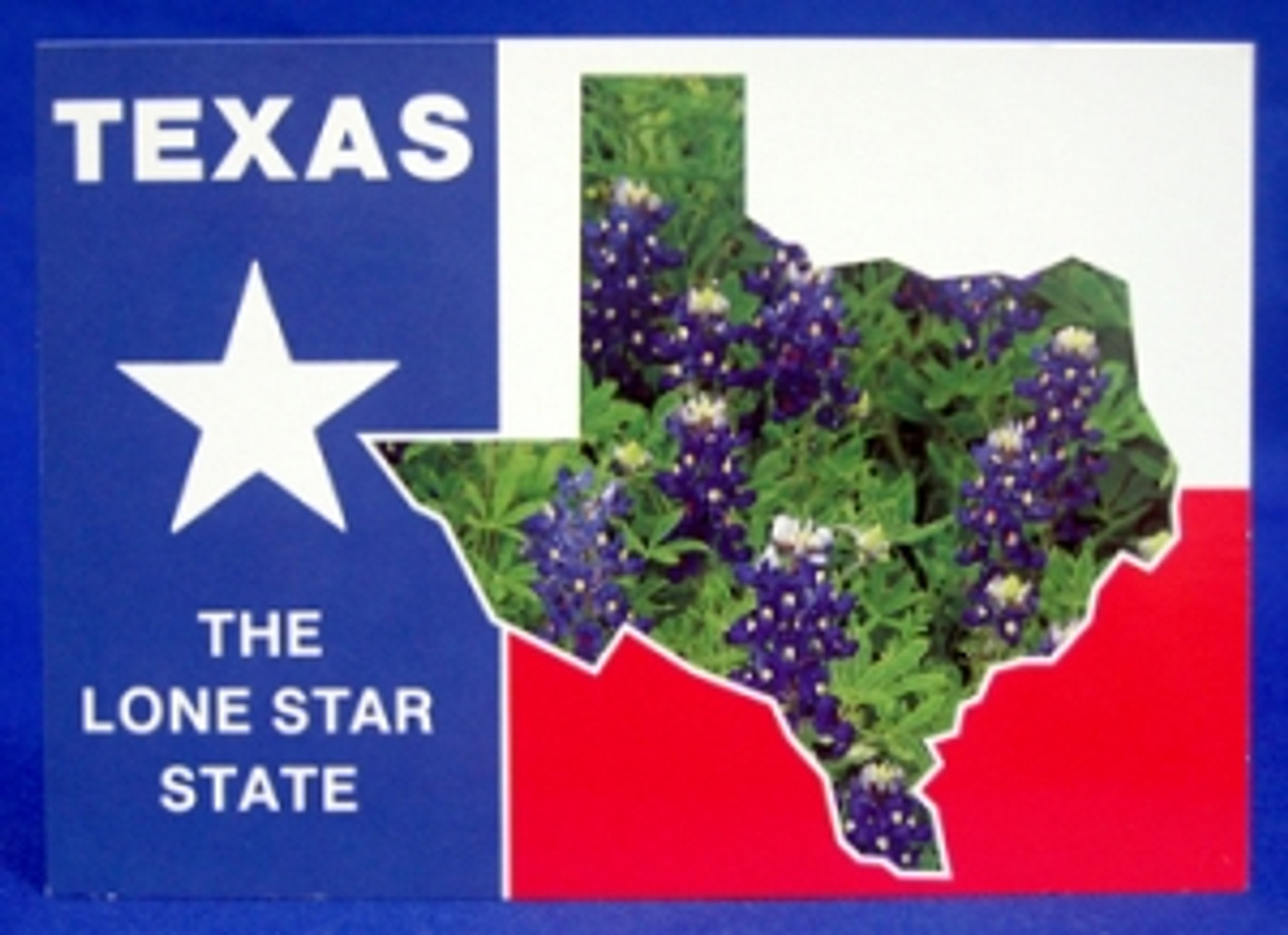 Texas Lone Star State Postcard