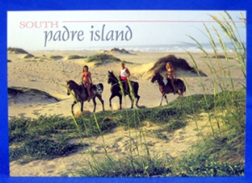 South Padre Island Horseback Riding Postcard