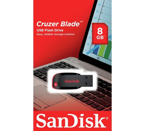 sandisk 8gb flash drive