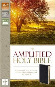 Amplified Holy Bible, Bonded Leather, Black - ISBN: 9780310443926