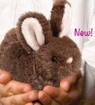 Little Bitty Bunny - Douglas Toys