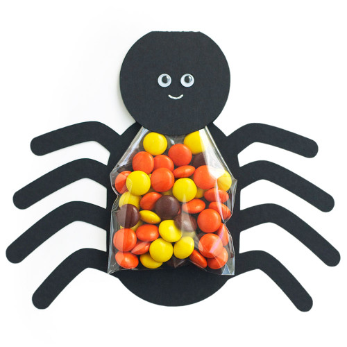 Spider Treat Bag