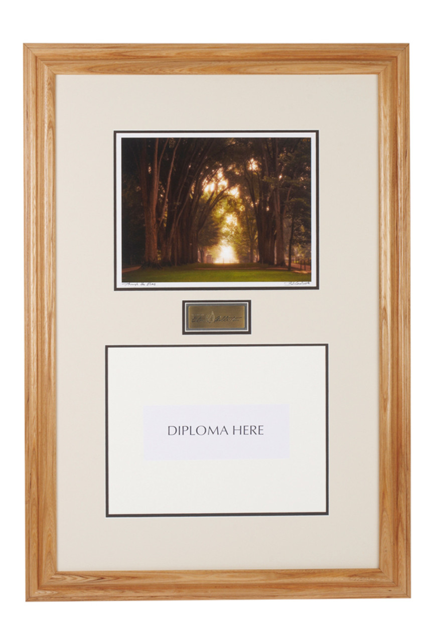 Diploma Frame with The Elm Trees, Penn State - The Penn State Elms ...