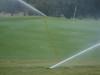 Turf-Tec Precipitation and Uniformity Gauges Set - Shown on a golf green