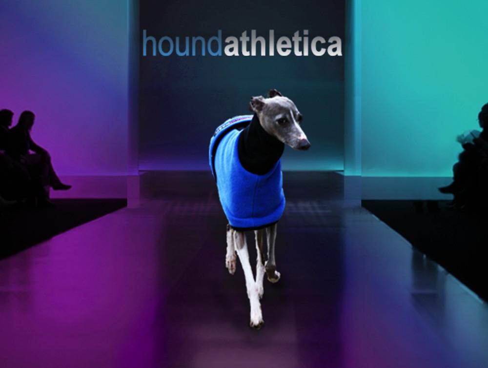italian greyhound fleece coat