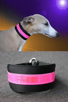 beseen candy reflective collar 1