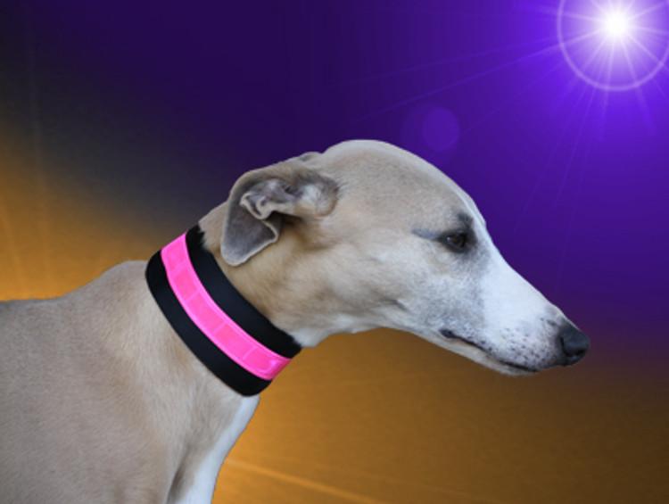 beseen candy reflective collar 2