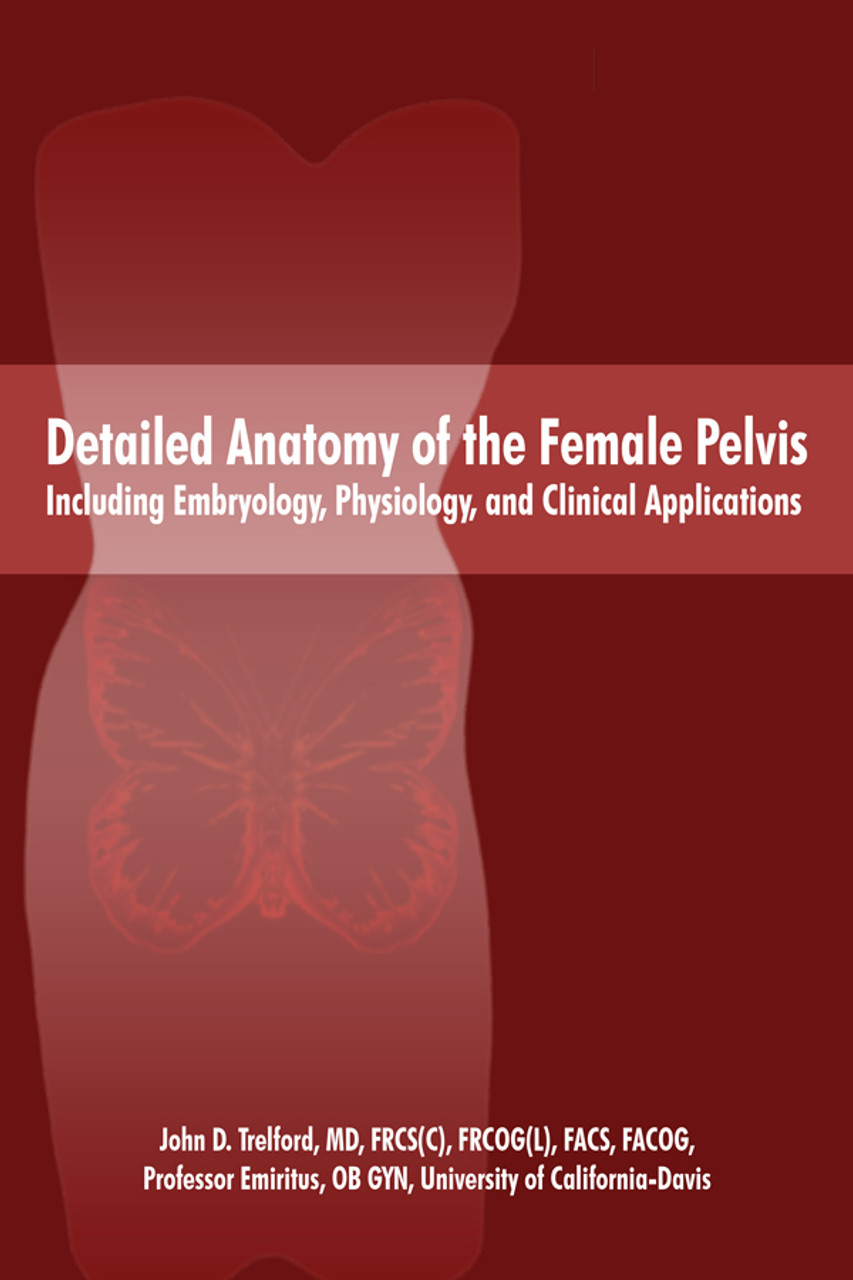 Detailed Anatomy of the Female Pelvis Including Embryology ...